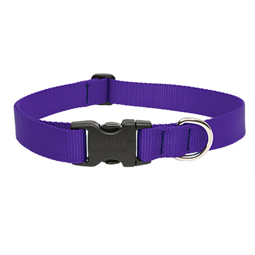 Lupine Nylon Dog Collar Adjustable Purple 13-22 inch
