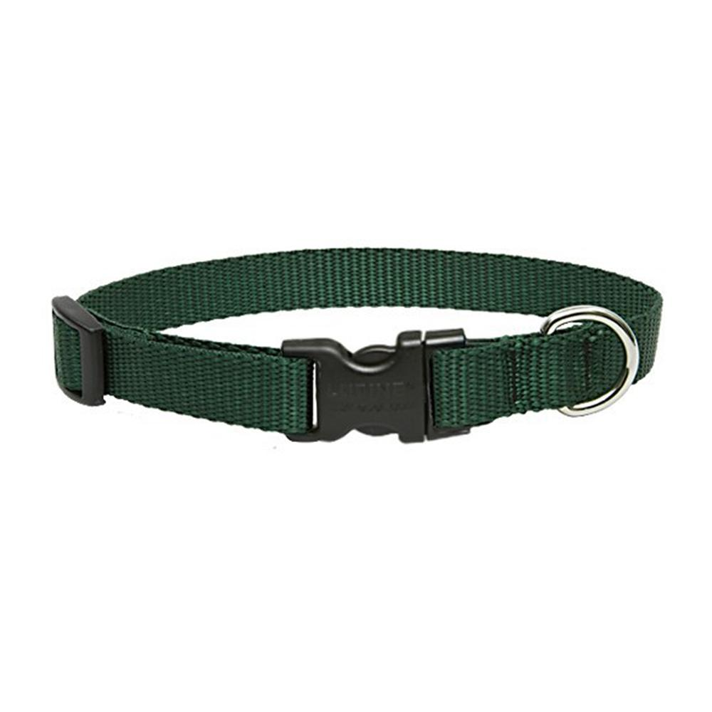 Lupine Nylon Dog Collar Adjustable Green 12-20 inch