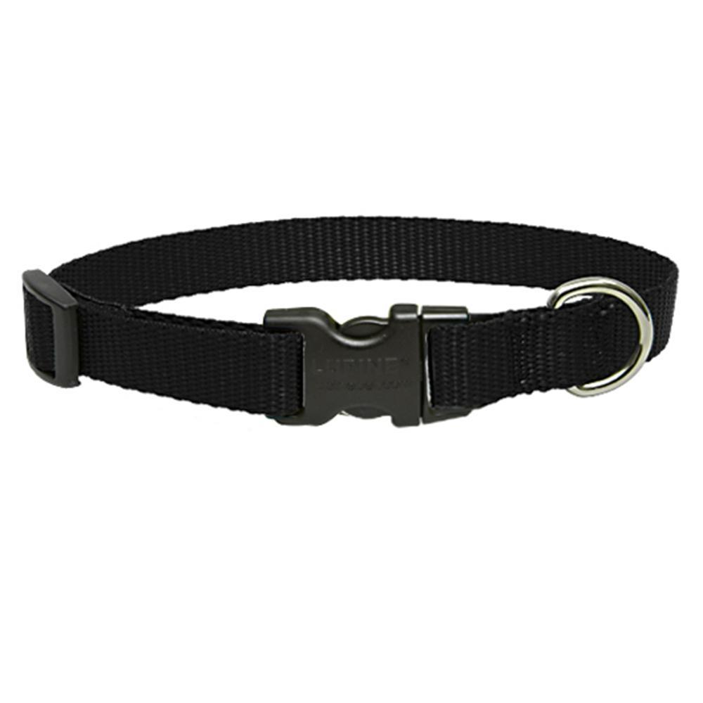 Lupine Nylon Dog Collar Adjustable Black 16-28 inch