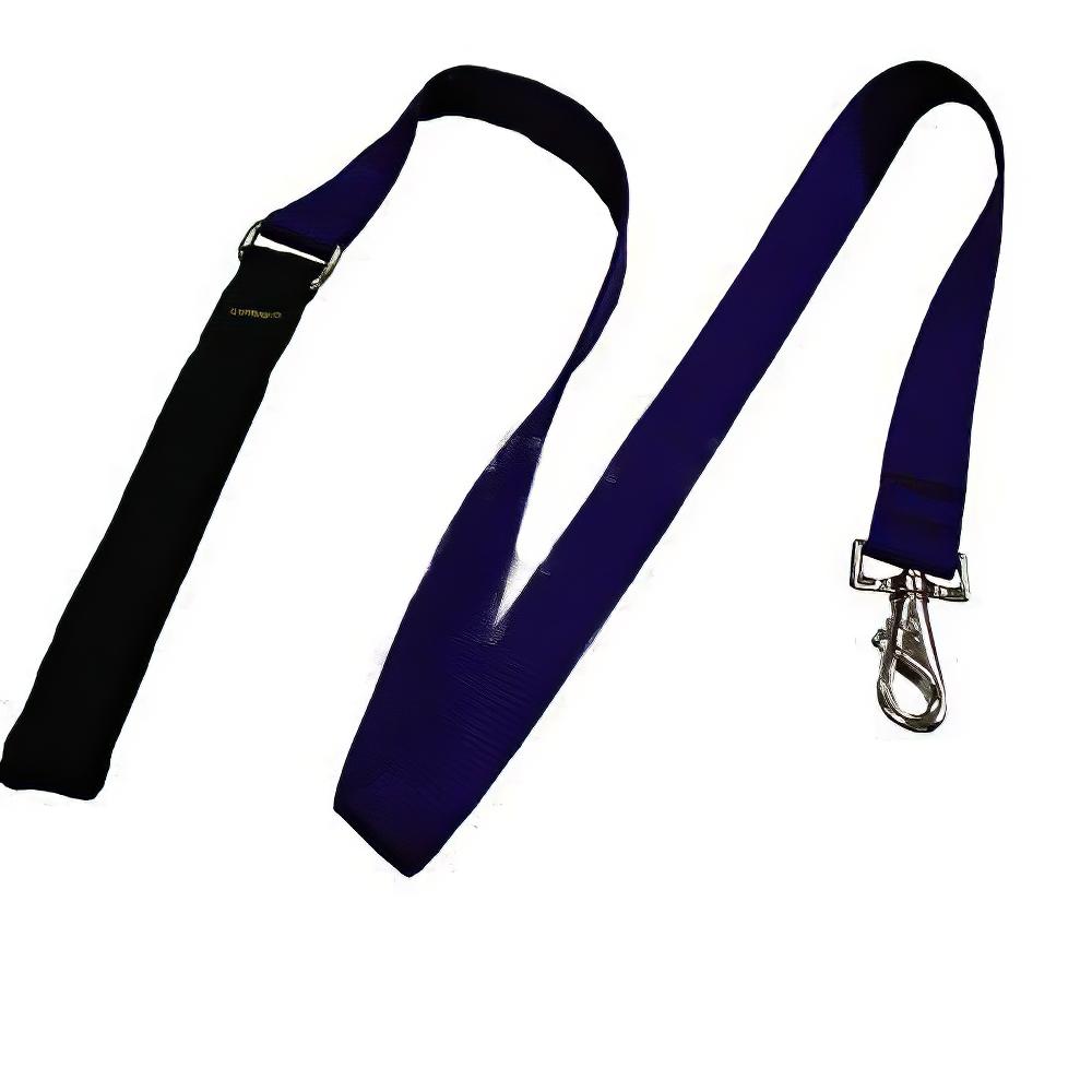 Lupine Nylon Dog Leash 4-foot x 1-inch Purple