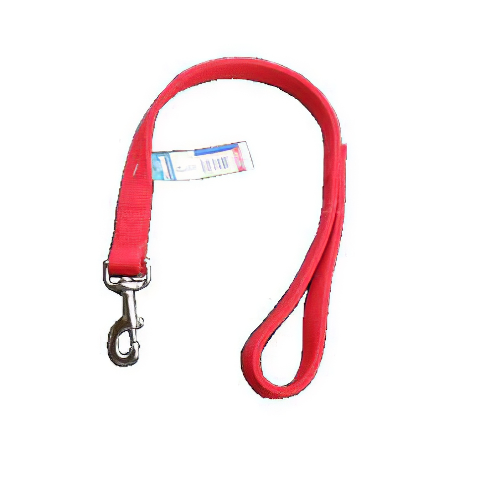 Nylon Dog Traffic Leash 1-inch x 2 foot Red