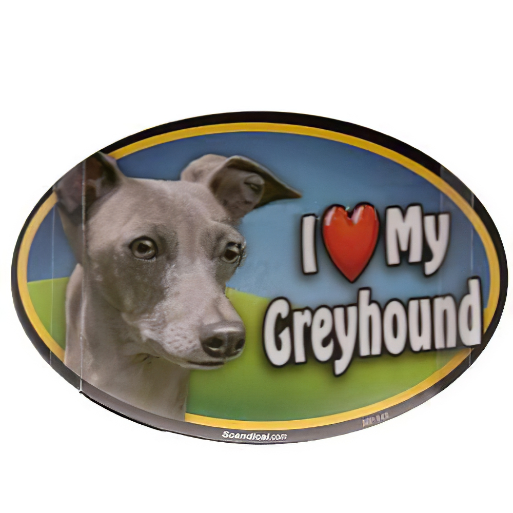 Dog Breed Image Magnet Oval Greyhound