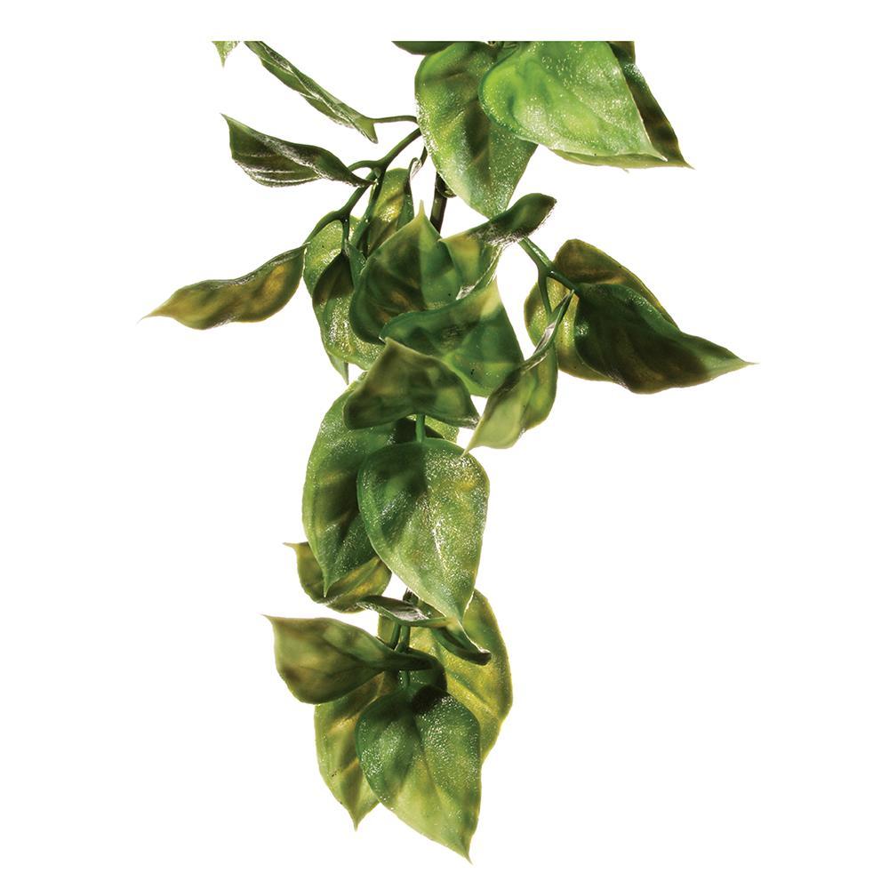 Exo Terra Amapallo Terrarium Plant Medium