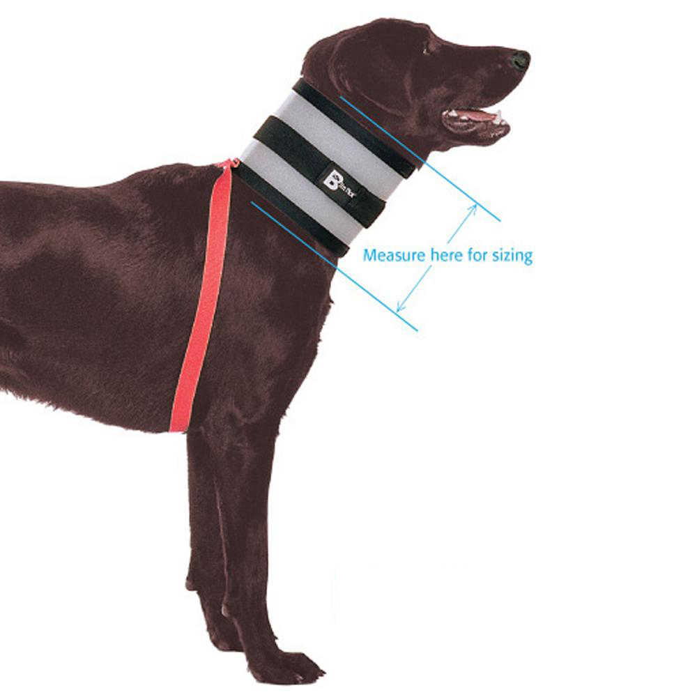 The Original BiteNot Dog Collar Size 5 Cone Alternative