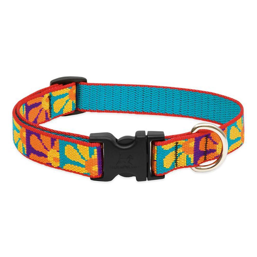 Dog Collar Adjustable Nylon Crazy Daisy Lupine 13-22