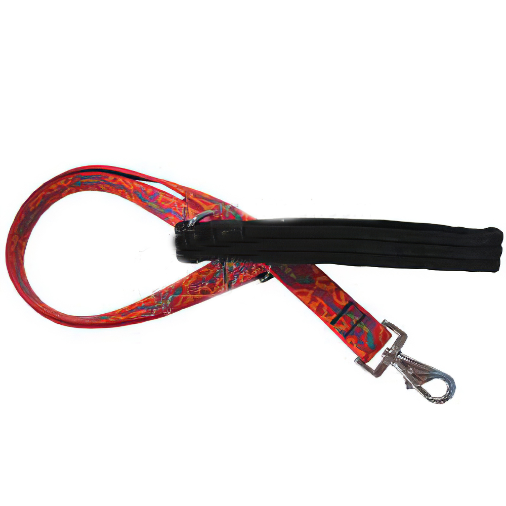 Lupine Nylon Dog Leash 4-foot x 1-inch Go Go Gecko