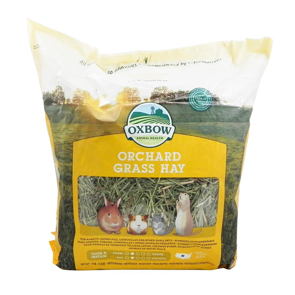 Oxbow Orchard Hay For Small Animals 40-oz
