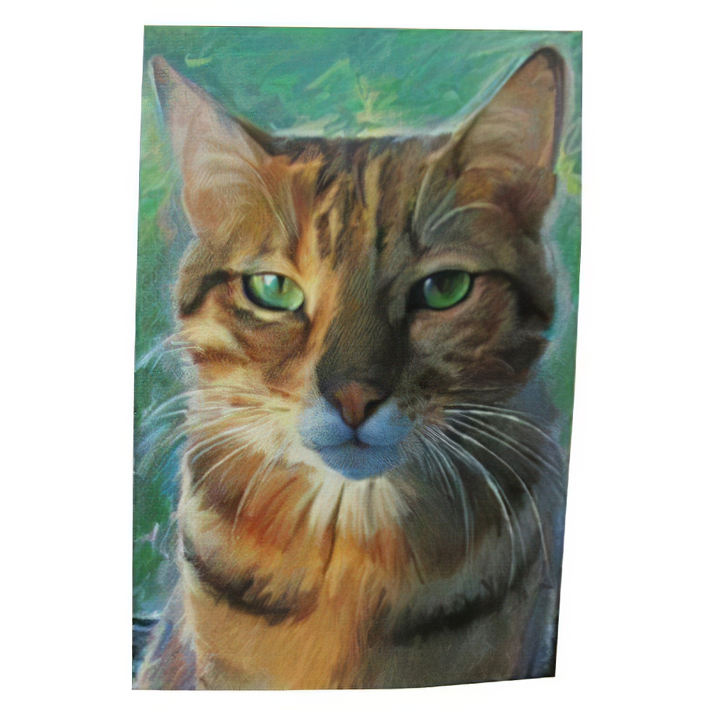 Robert McClintock Licensed Garden Flag Cat