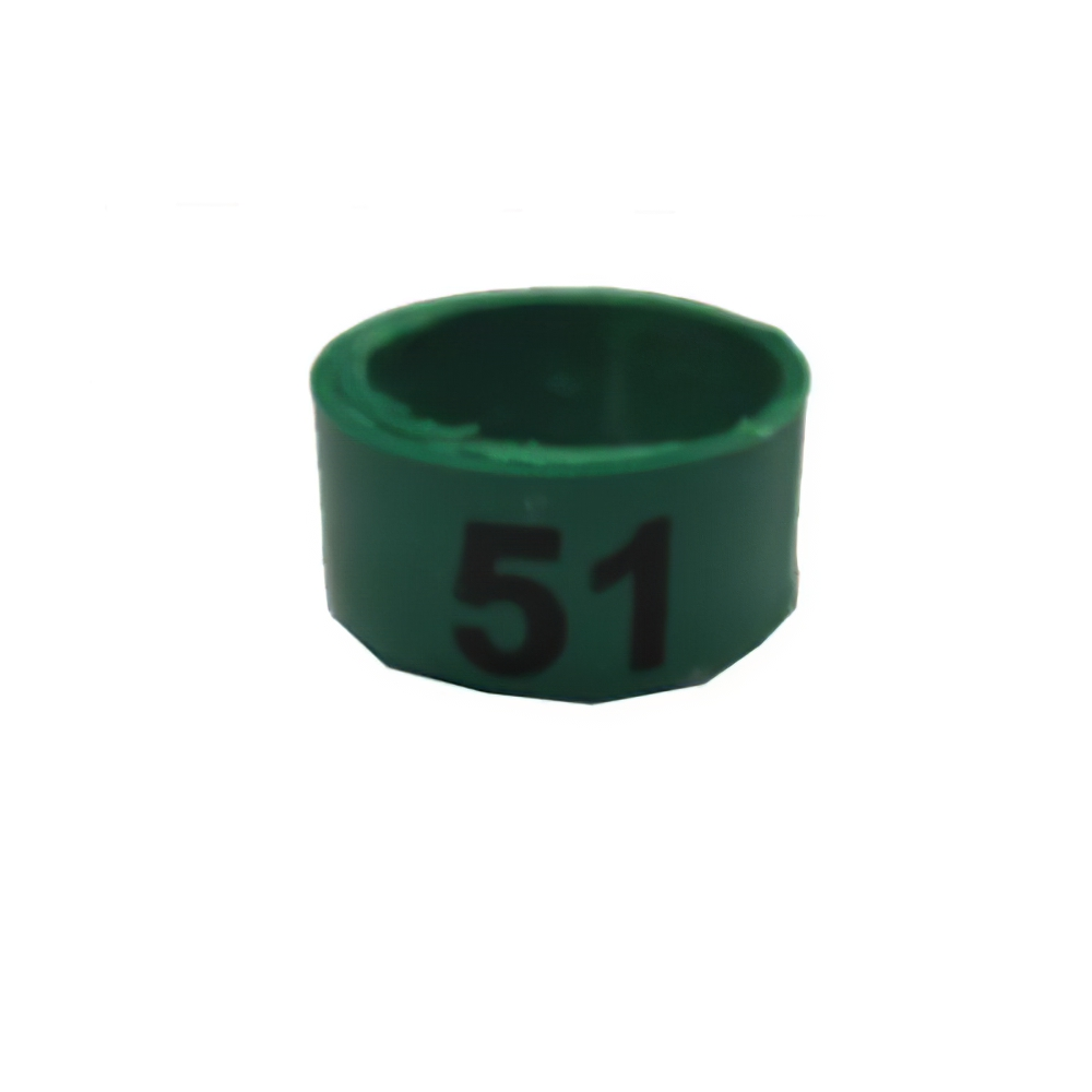 Poultry Numbered Leg Bandette Green Size 11 (single band)