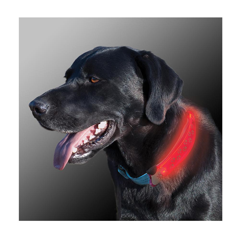 Nite Dawg LED Collar Cover Pink for Dog Collars