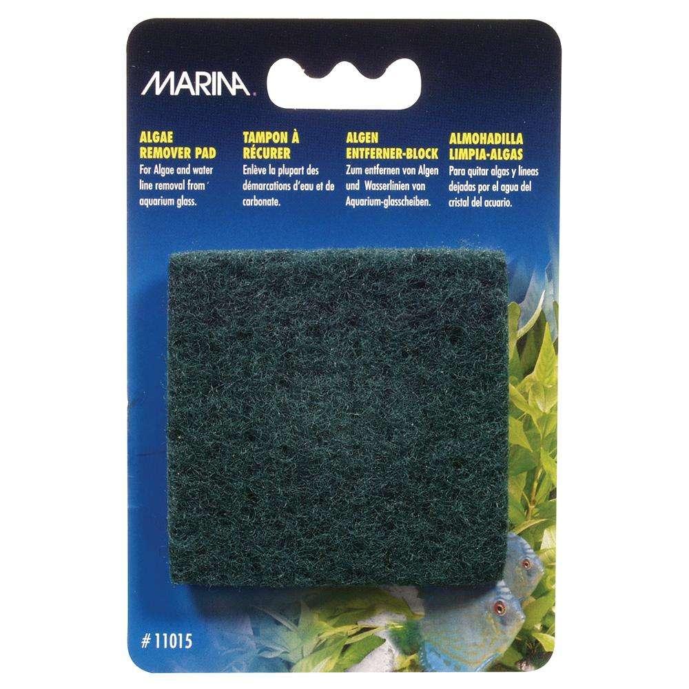 Marina Algae Remover Scrub Pad