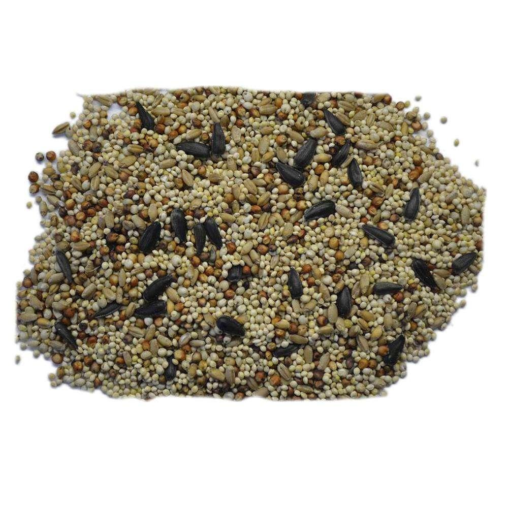 Volkman Western Delight Wild Bird Food Seed Mix 20 lb