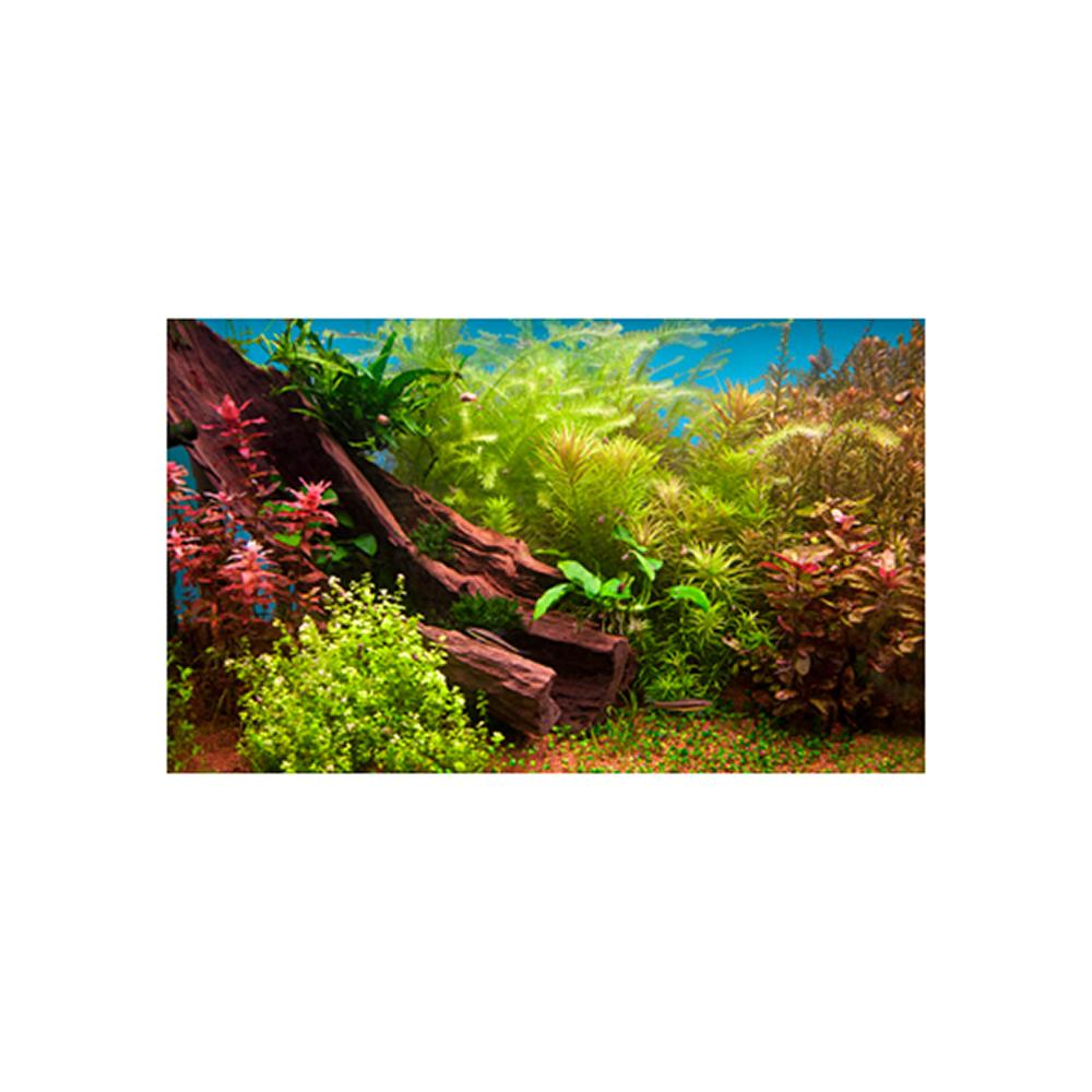 Fresh Water Plant 3D Aquarium Background 24 x 16-in.