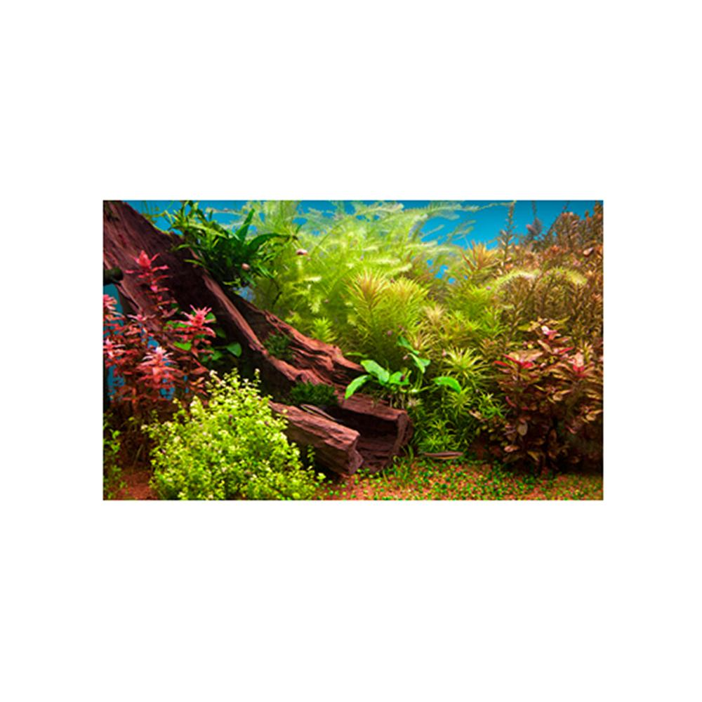 Fresh Water Plant 3D Aquarium Background 20 x 12-in.