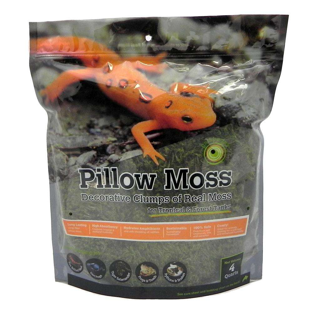 Galapagos Pillow Moss 4qt Terrarium Decoration and Substrate