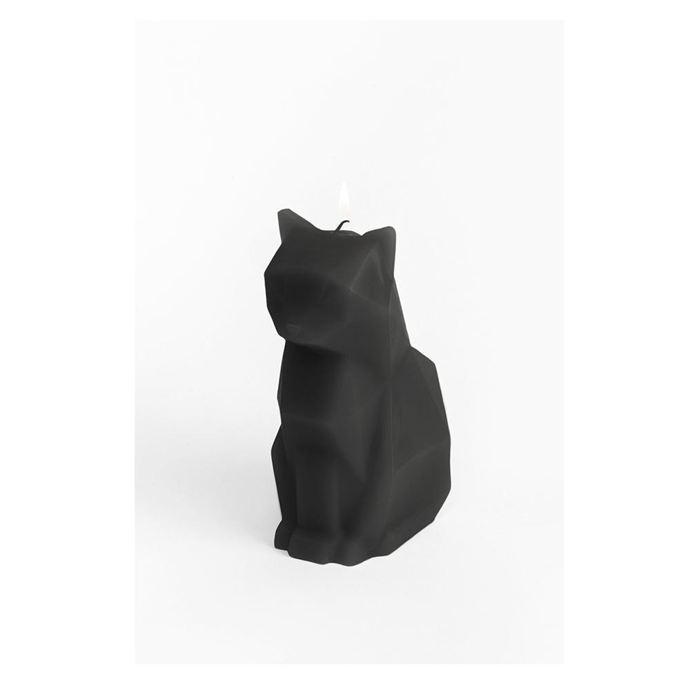 Pyro Pet Candle Kisa Black Paraffin Wax Candle with Skeleton