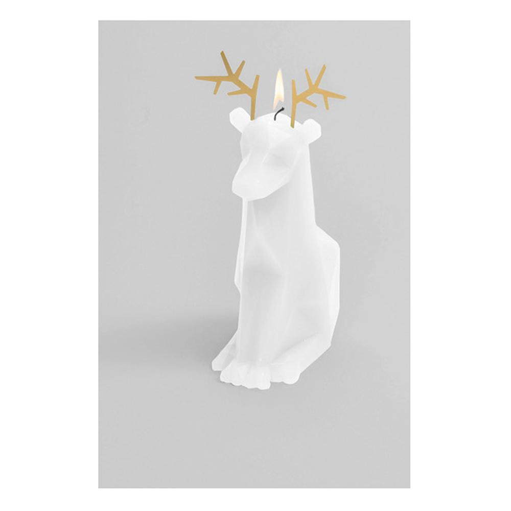 Pyro Pet Candle Dyri White Paraffin Wax Candle with Skeleton