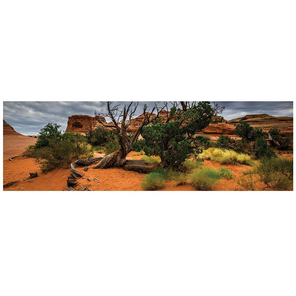 Galapagos Arid Terrarium Cling Background 11.125 x 36-inches