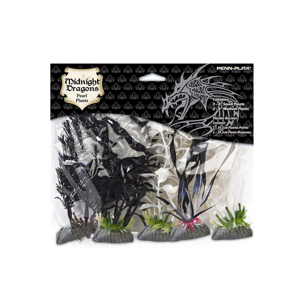 Midnight Dragons Small and Medium Plant Pack