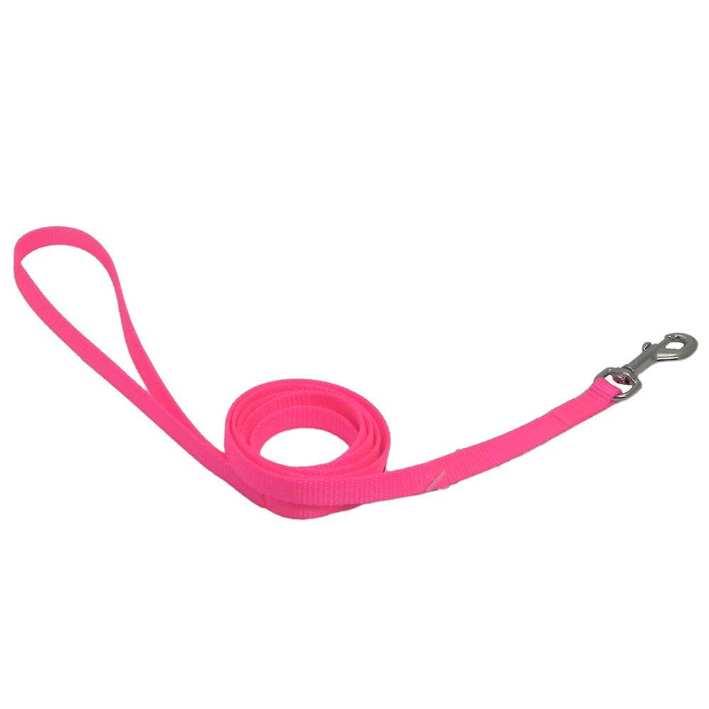 Nylon Dog Leash 3/8-inch x  6 foot Neon Pink