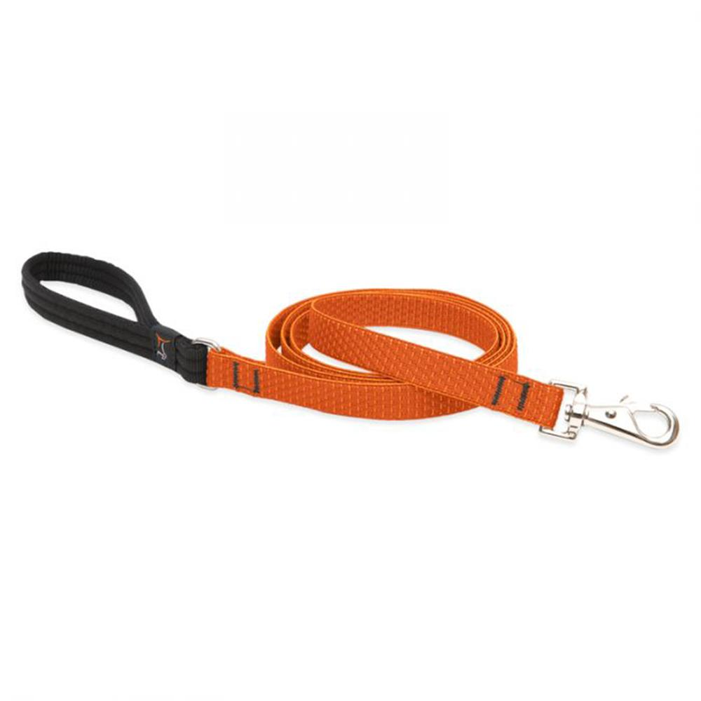 Lupine Dog Leash 6-foot x 3/4 inch Eco Pumpkin