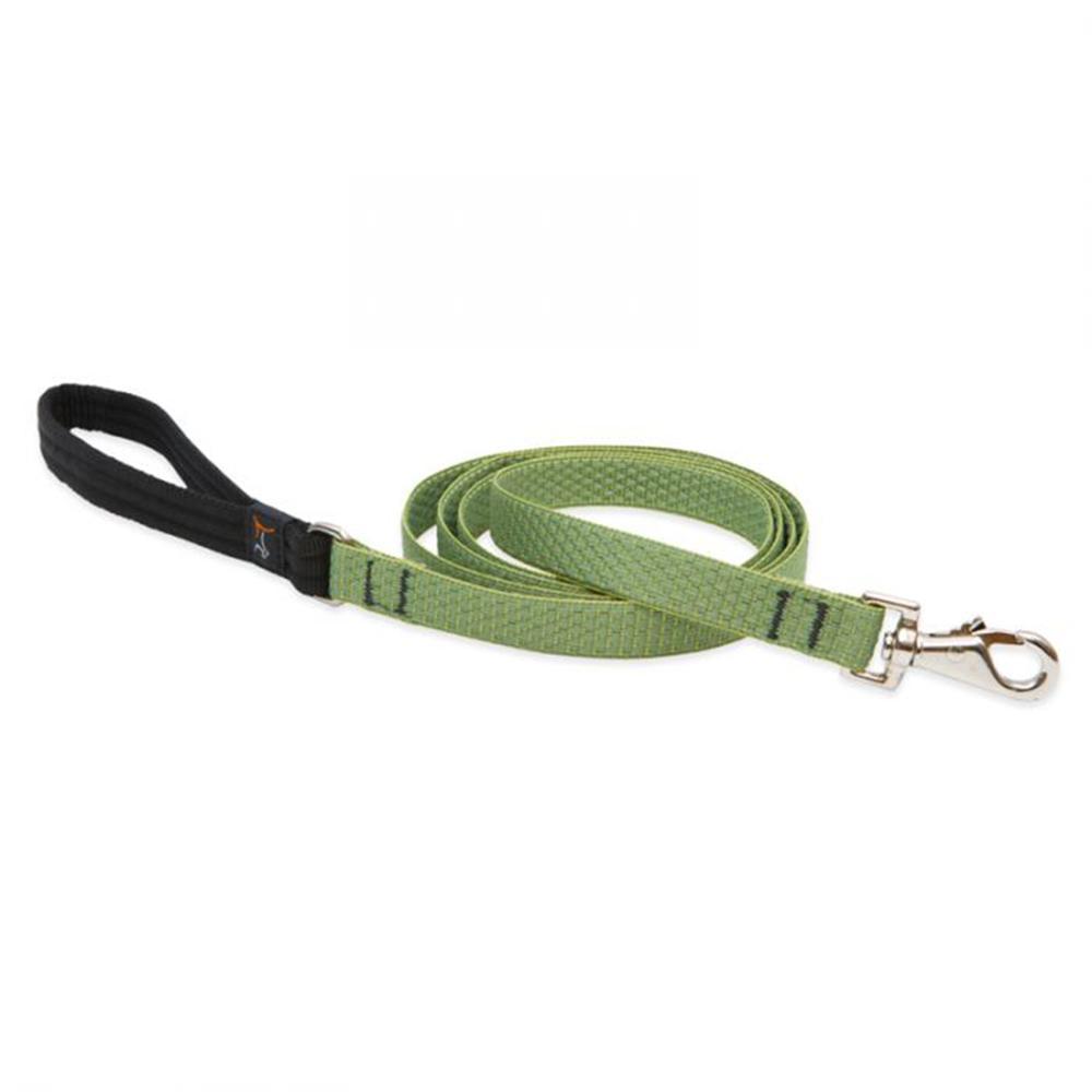 Lupine Dog Leash 6-foot x 3/4 inch Eco Moss