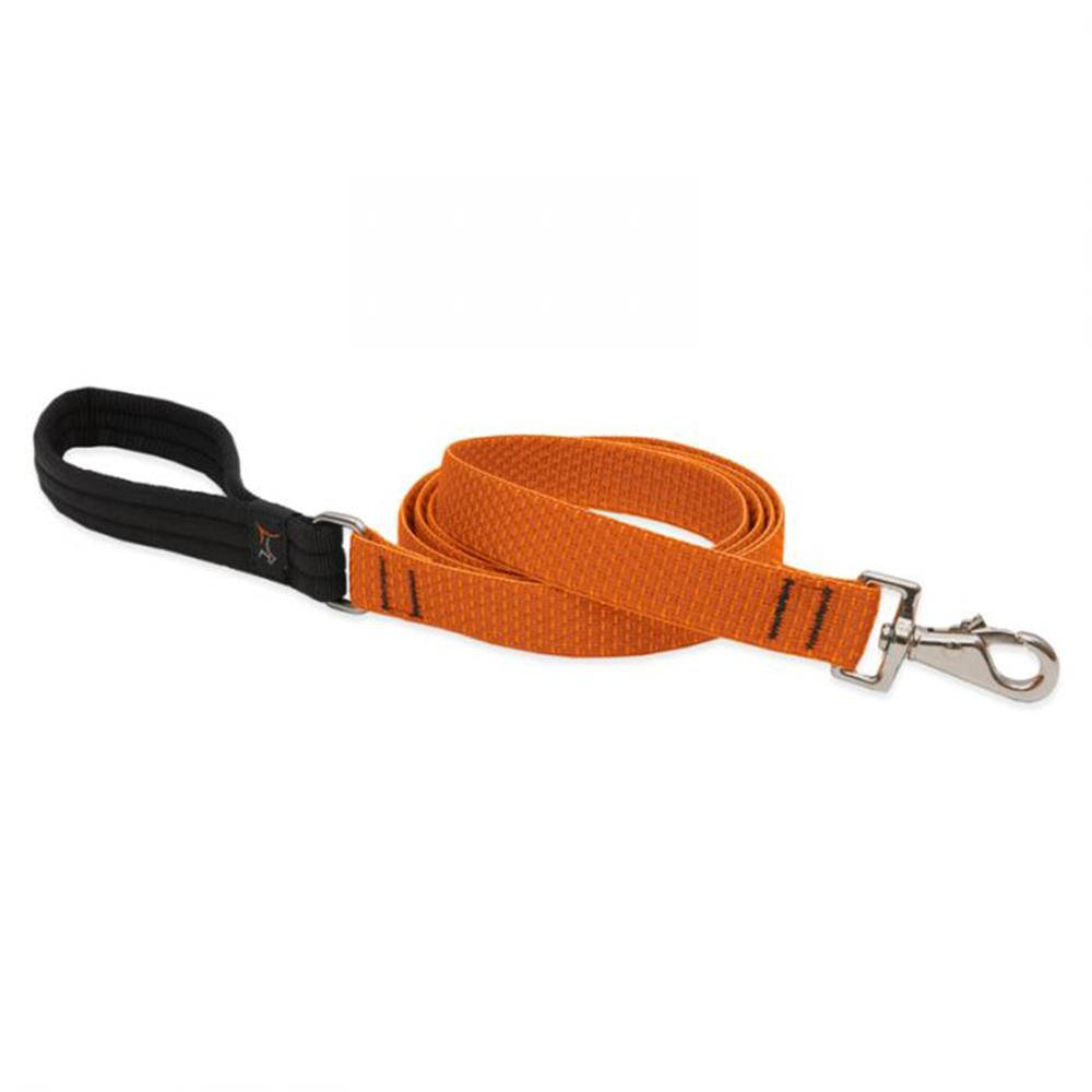 Lupine Dog Leash 6-foot x 1 Inch Pumpkin