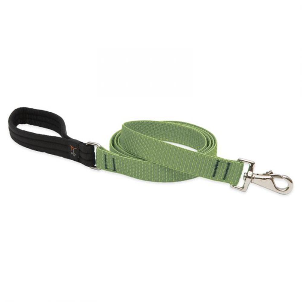 Lupine Dog Leash 6-foot x 1 Inch Moss