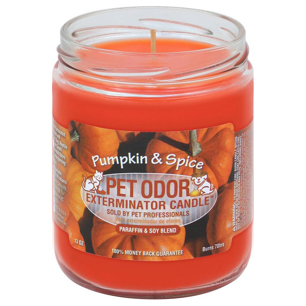 Pet Odor Eliminator Pumpkin Spice Candle