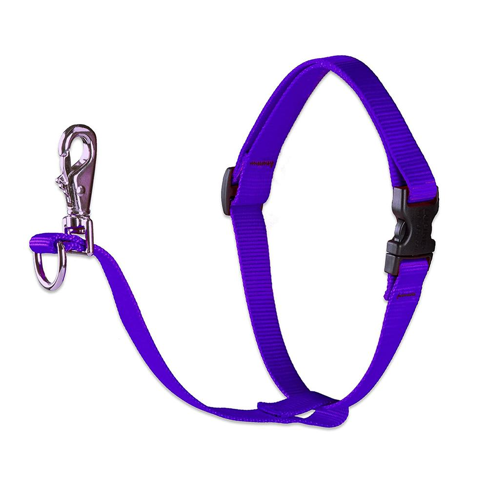 Lupine No Pull Training Harness For Dogs Large Purple