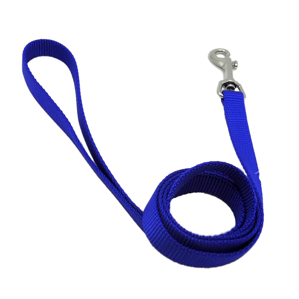 Nylon Dog Leash 5/8-inch x 4 foot Blue