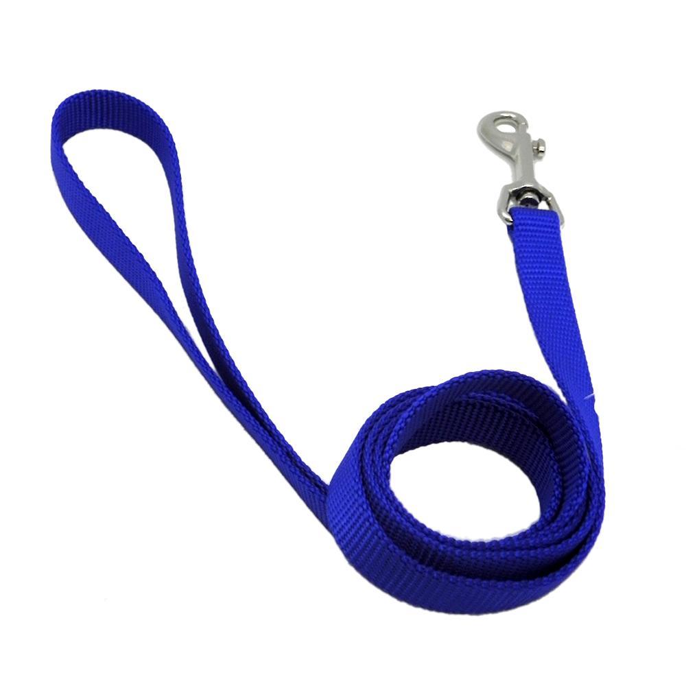 Nylon Dog Leash 5/8-inch x 6 foot Blue