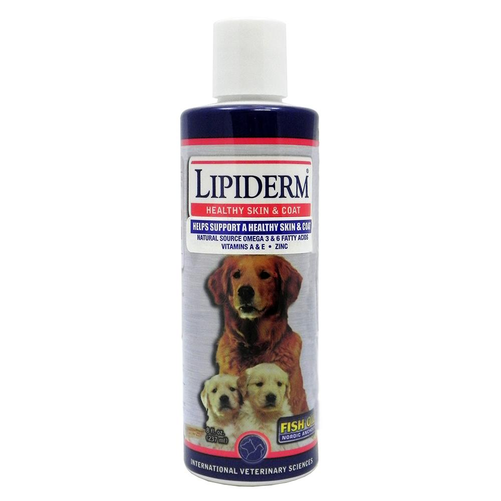 Lipiderm 8 ounce Liquid Dog Skin and Coat Supplement