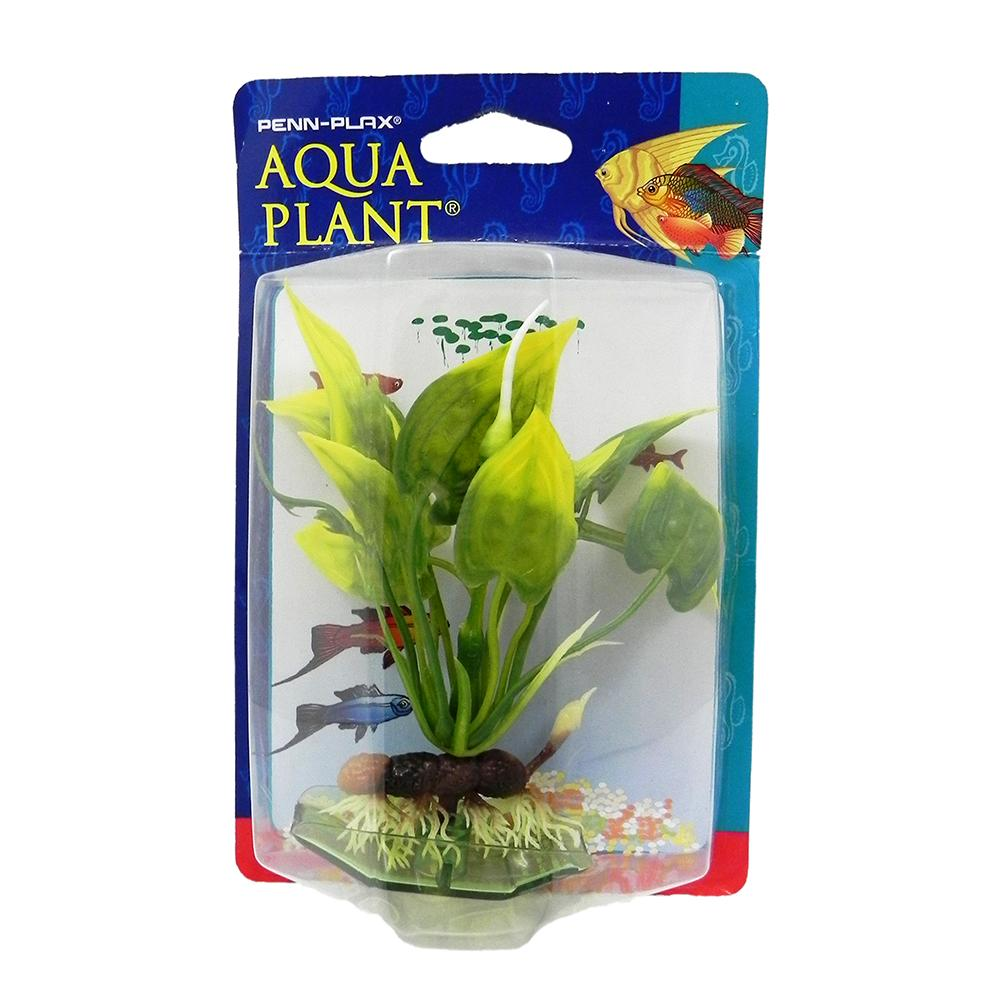 Malay Cryptocoryne Bottom Plastic Aquarium Plant
