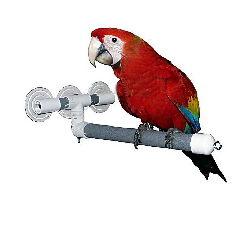 Shower and Window Bird Perch Lg